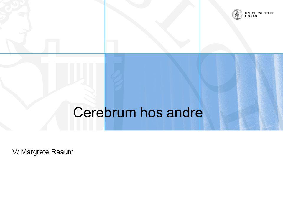 Cerebrum hos andre V/ Margrete Raaum