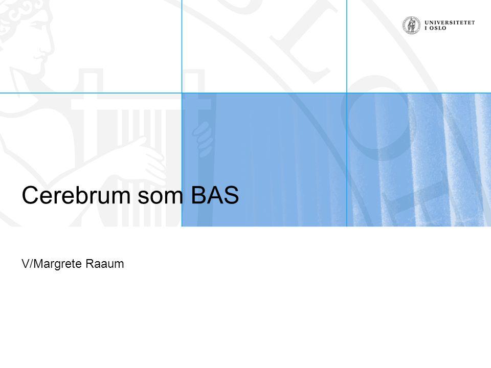 Cerebrum som BAS V/Margrete Raaum