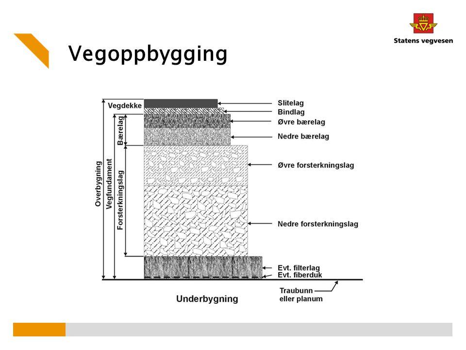 Vegoppbygging