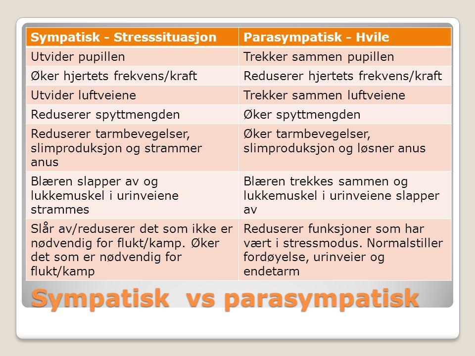 Sympatisk vs parasympatisk Sympatisk - StresssituasjonParasympatisk - Hvile Utvider pupillenTrekker sammen pupillen Øker hjertets frekvens/kraftReduse