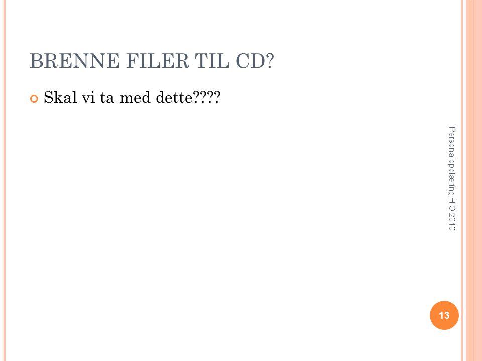 BRENNE FILER TIL CD? Skal vi ta med dette???? 13 Personalopplæring HiO 2010