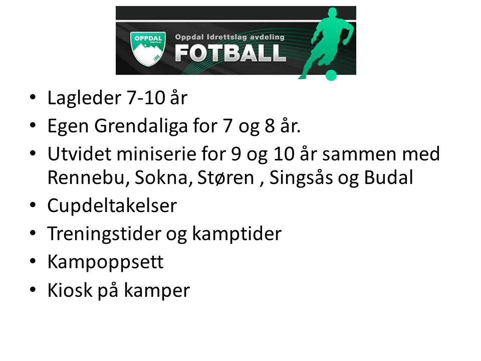 Lagleder 7-10 år Egen Grendaliga for 7 og 8 år.