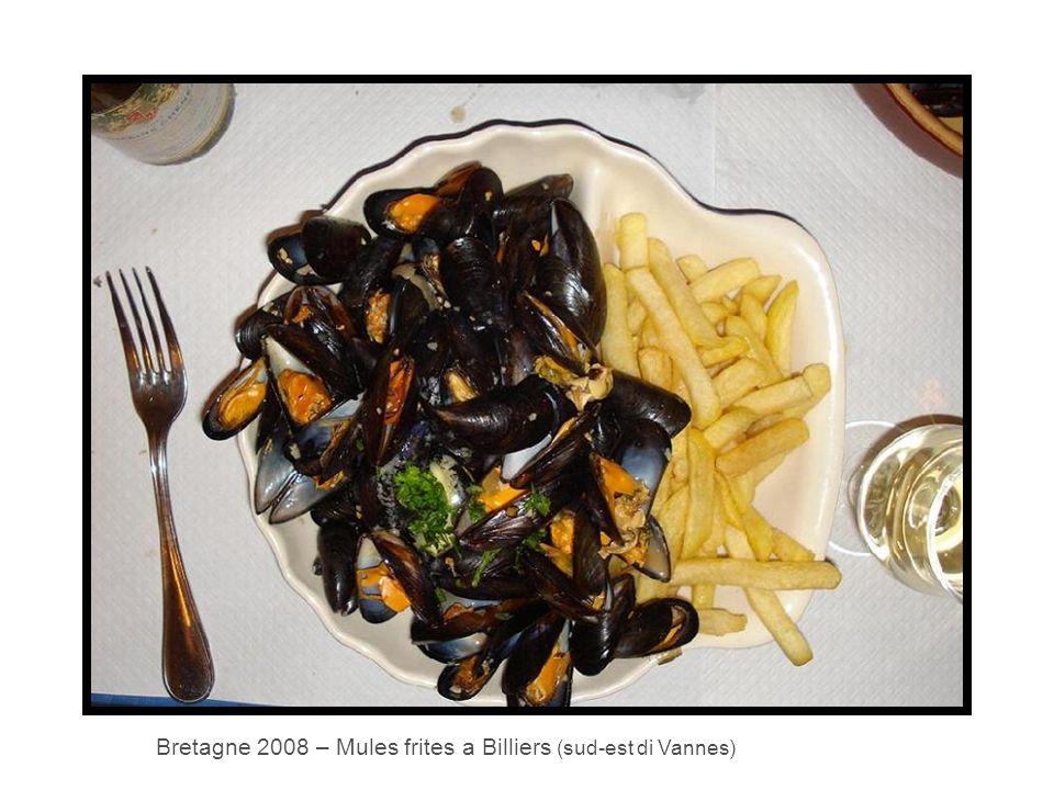 Bretagne 2008 – Mules frites a Billiers (sud-est di Vannes)