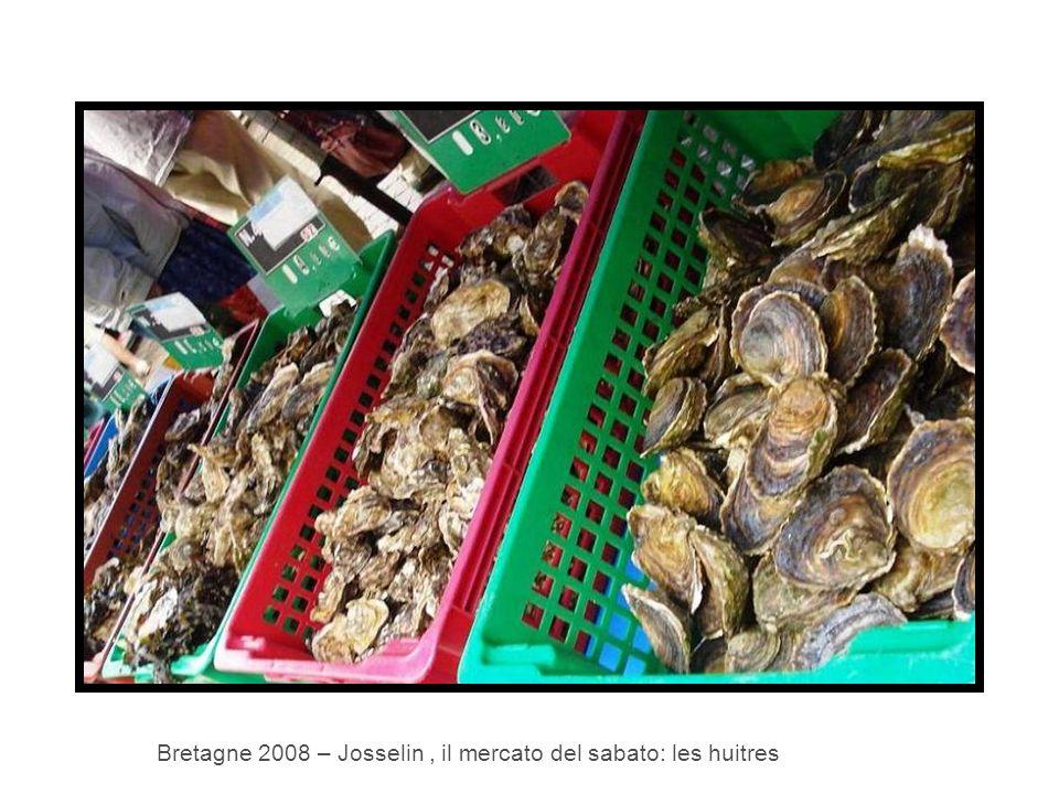 Bretagne 2008 – Josselin, il mercato del sabato: les huitres