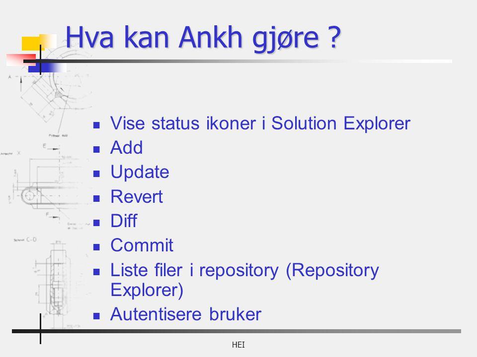 Hva kan Ankh gjøre .