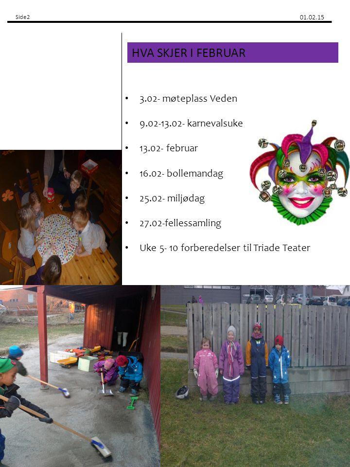 Side2 01.02.15 3.02- møteplass Veden 9.02-13.02- karnevalsuke 13.02- februar 16.02- bollemandag 25.02- miljødag 27.02-fellessamling Uke 5- 10 forberedelser til Triade Teater HVA SKJER I FEBRUAR 2