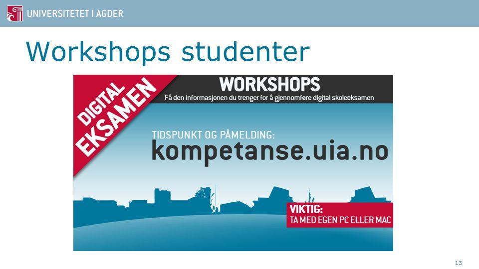 Workshops studenter 13