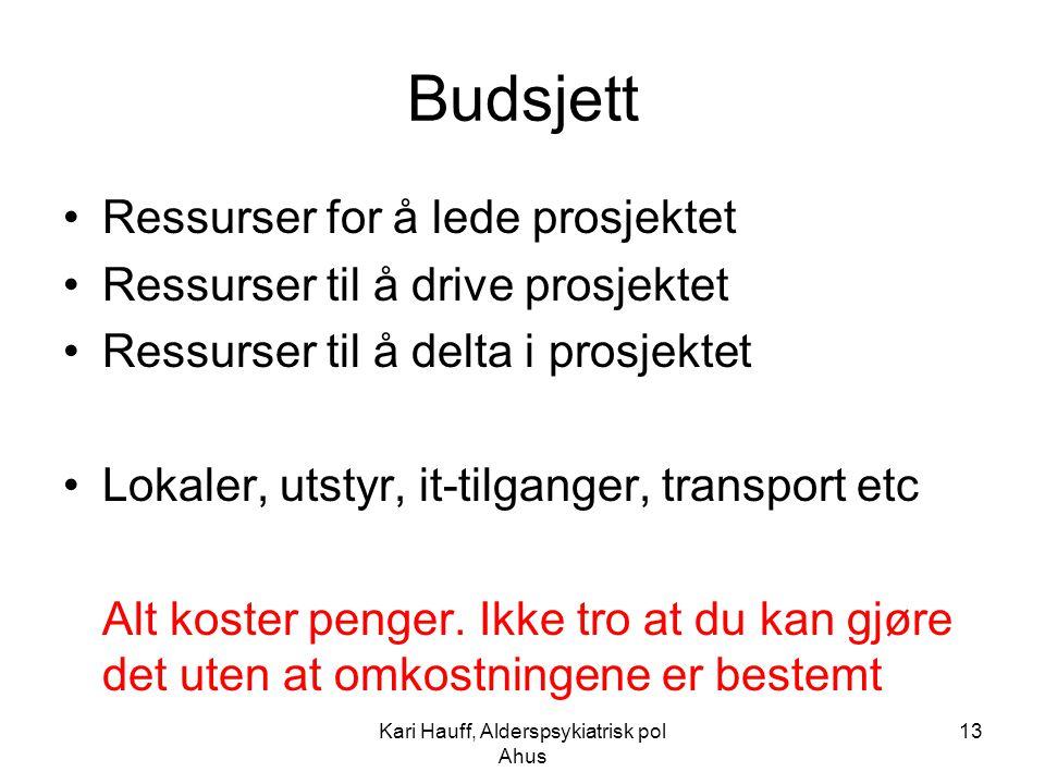 Kari Hauff, Alderspsykiatrisk pol Ahus 13 Budsjett Ressurser for å lede prosjektet Ressurser til å drive prosjektet Ressurser til å delta i prosjektet