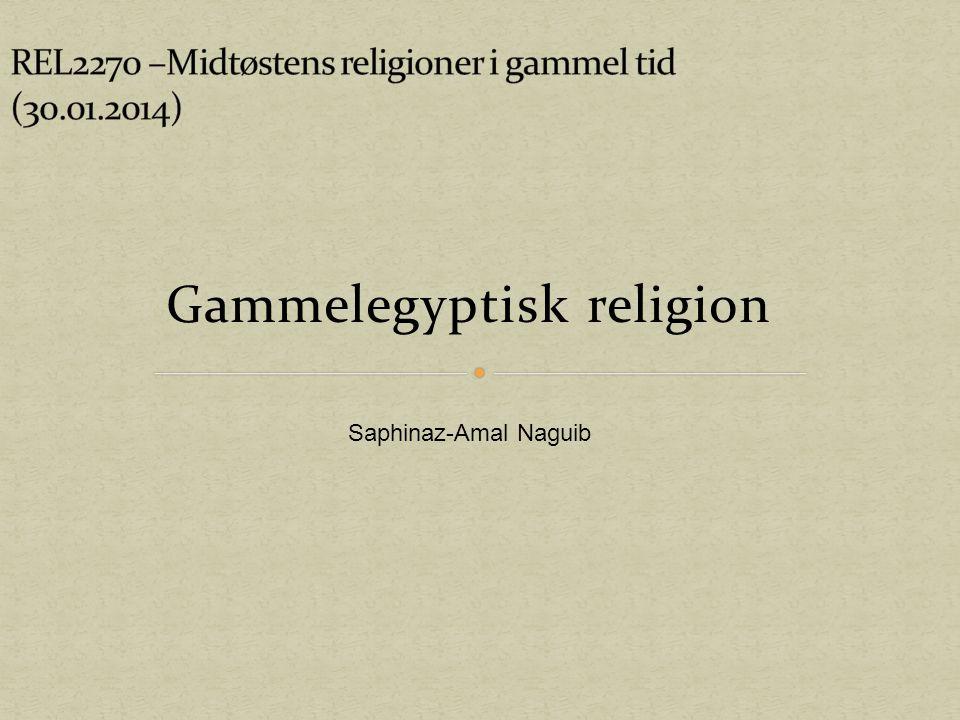 Gammelegyptisk religion Saphinaz-Amal Naguib