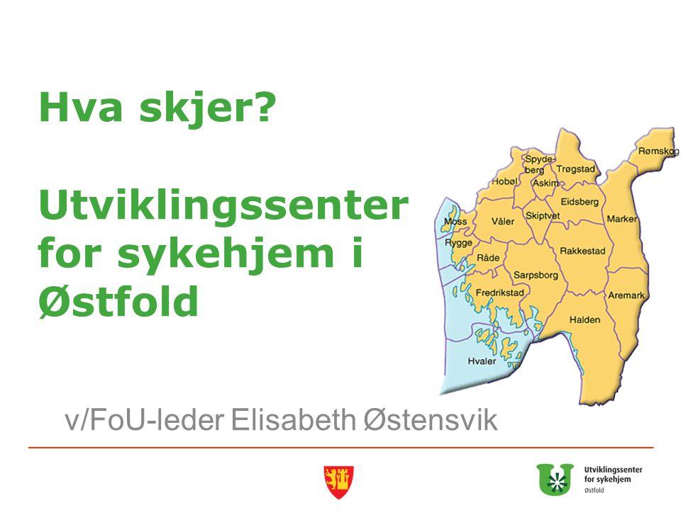 Hva skjer? Utviklingssenter for sykehjem i Østfold v/FoU-leder Elisabeth Østensvik