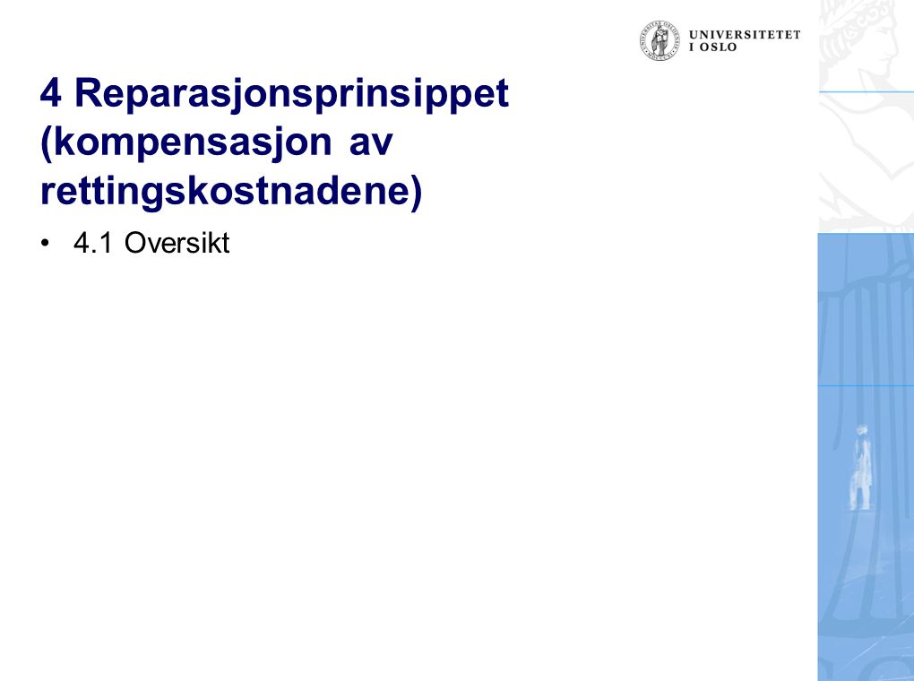 4 Reparasjonsprinsippet (kompensasjon av rettingskostnadene) 4.1 Oversikt