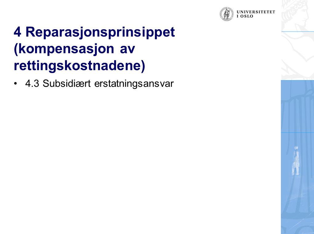 4 Reparasjonsprinsippet (kompensasjon av rettingskostnadene) 4.3 Subsidiært erstatningsansvar