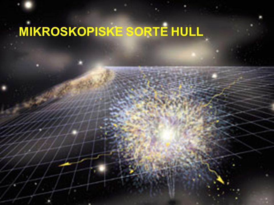 MIKROSKOPISKE SORTE HULL