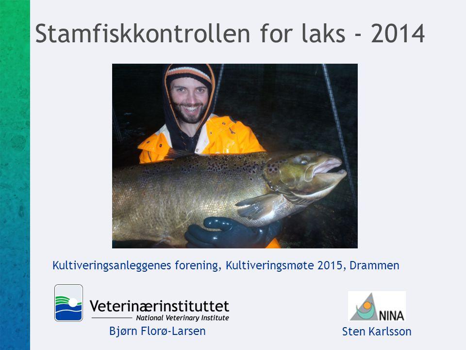 Stamfiskkontrollen for laks - 2014 Bjørn Florø-Larsen Sten Karlsson Kultiveringsanleggenes forening, Kultiveringsmøte 2015, Drammen