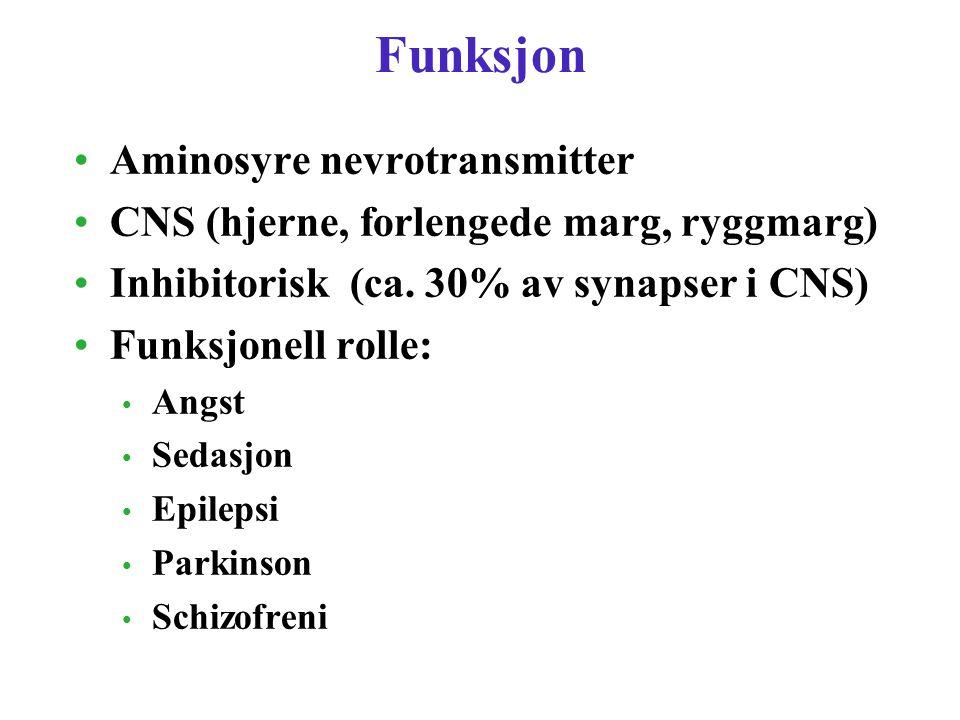 Funksjon Aminosyre nevrotransmitter CNS (hjerne, forlengede marg, ryggmarg) Inhibitorisk (ca. 30% av synapser i CNS) Funksjonell rolle: Angst Sedasjon