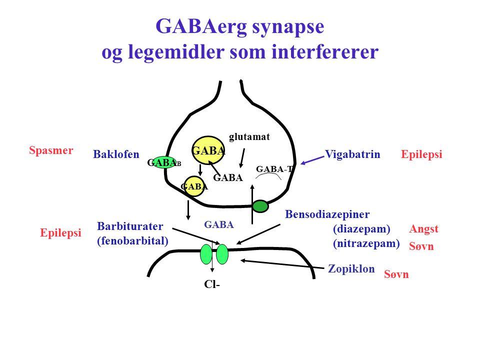 GABAerg synapse og legemidler som interfererer GABA GABA B Bensodiazepiner (diazepam) (nitrazepam) Barbiturater (fenobarbital) Vigabatrin GABA-T gluta