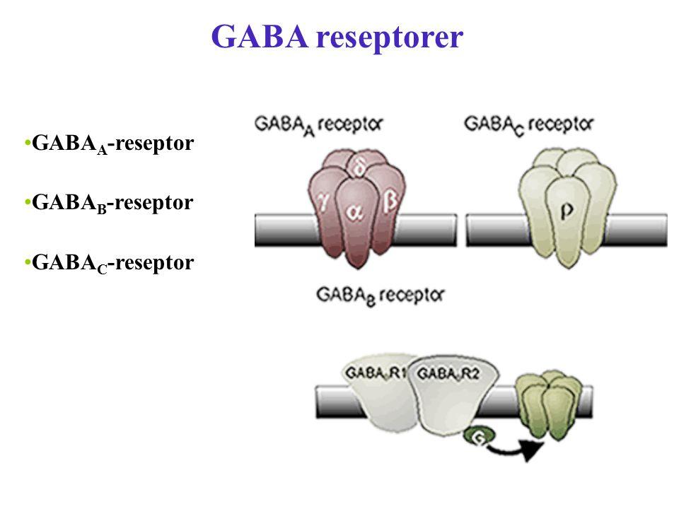 GABA reseptorer GABA A -reseptor GABA B -reseptor GABA C -reseptor