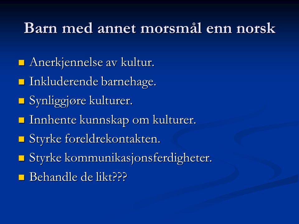 Barn med annet morsmål enn norsk Anerkjennelse av kultur.