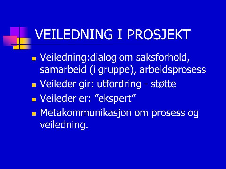 """VEILEDNING I PROSJEKT Veiledning:dialog om saksforhold, samarbeid (i gruppe), arbeidsprosess Veileder gir: utfordring - støtte Veileder er: """"ekspert"""""""