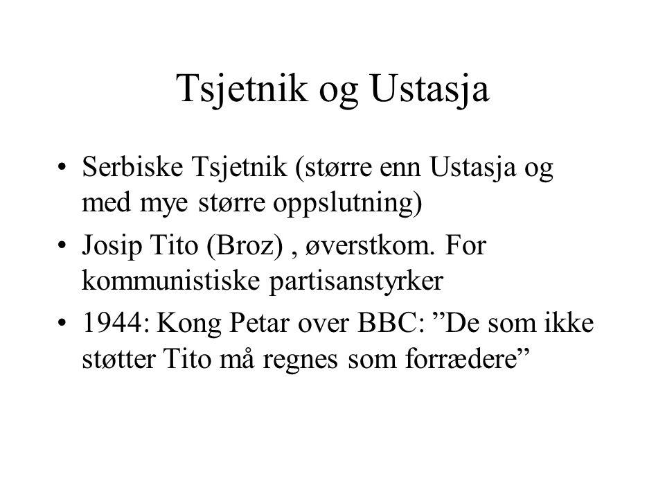 Tsjetnik og Ustasja Serbiske Tsjetnik (større enn Ustasja og med mye større oppslutning) Josip Tito (Broz), øverstkom. For kommunistiske partisanstyrk