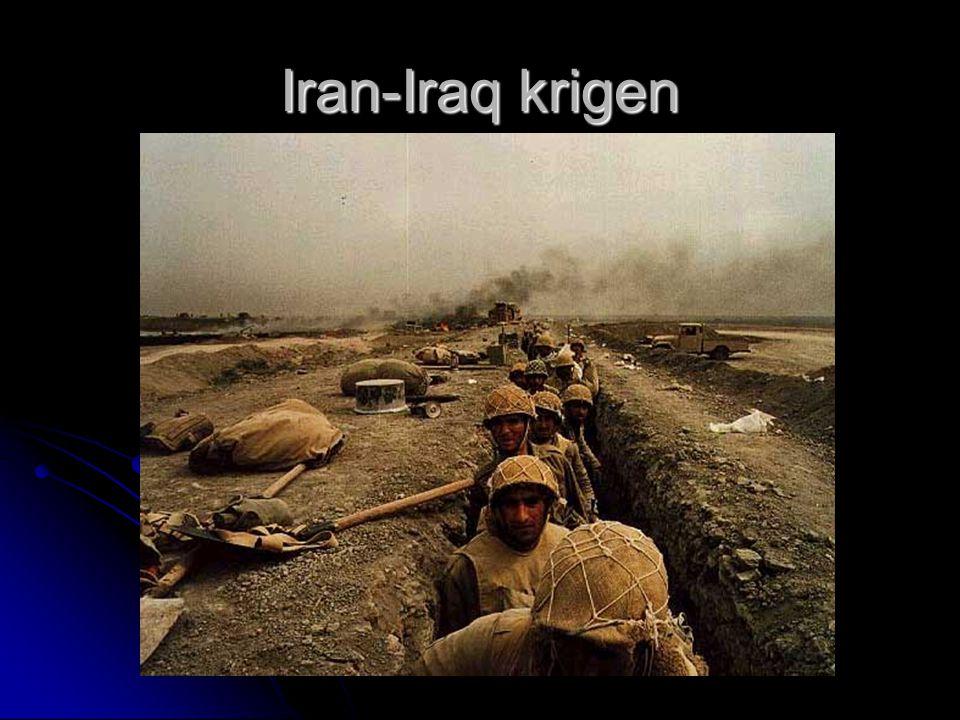 Iran-Iraq krigen