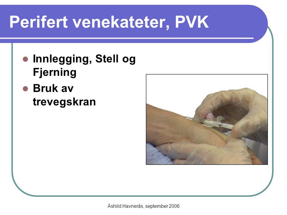 Åshild Havnerås, september 2006 Perifert venekateter, PVK Innlegging, Stell og Fjerning Bruk av trevegskran
