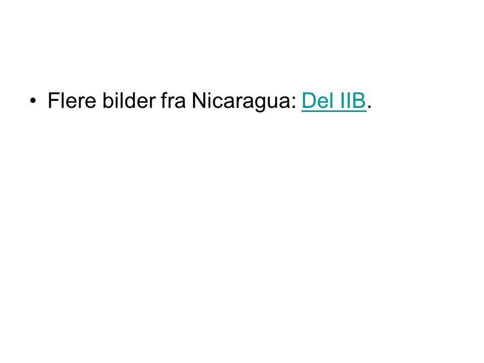 Flere bilder fra Nicaragua: Del IIB.Del IIB
