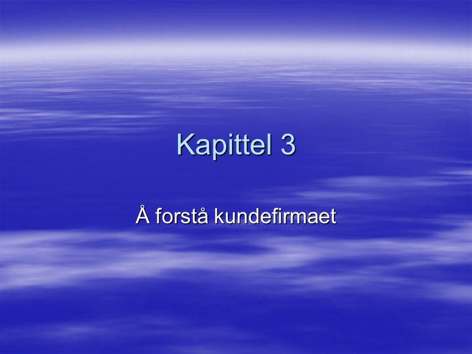 Kapittel 3 Å forstå kundefirmaet
