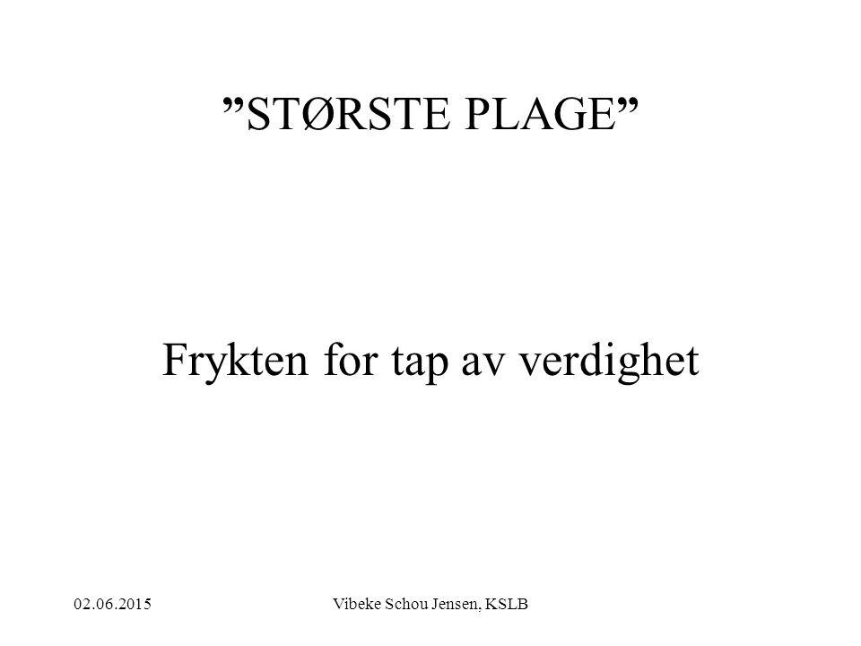 """02.06.2015Vibeke Schou Jensen, KSLB """"STØRSTE PLAGE"""" Frykten for tap av verdighet"""