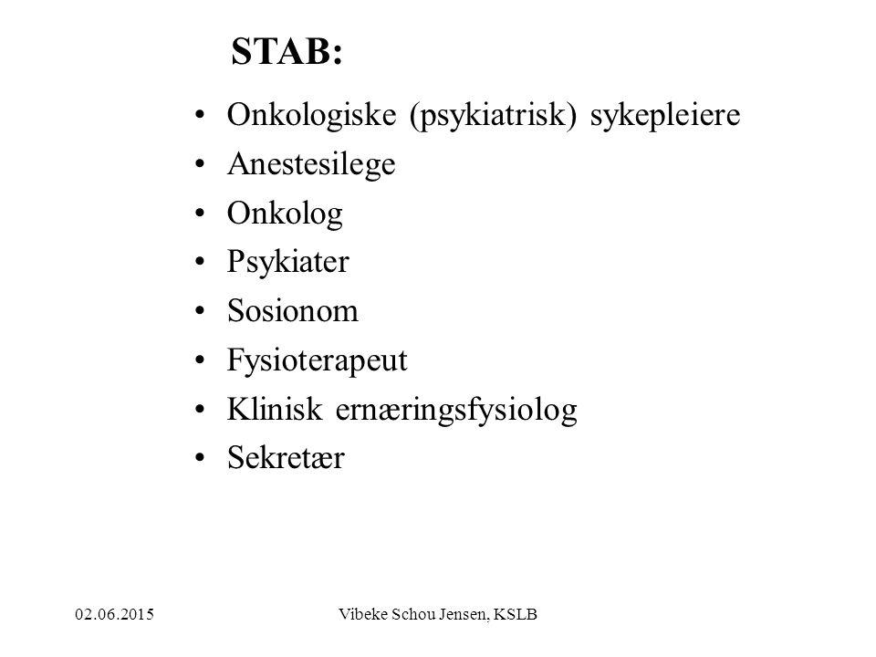 02.06.2015Vibeke Schou Jensen, KSLB GI PASIENT OG PÅRØRENDE HJELP TIL Å SORTERE OG RYDDE