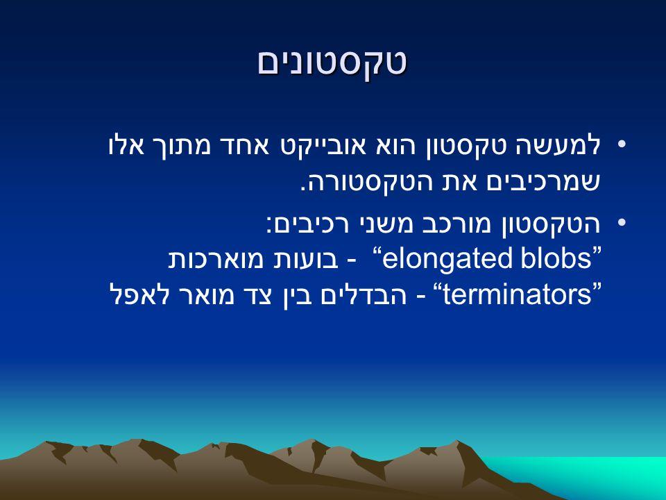 """טקסטונים למעשה טקסטון הוא אובייקט אחד מתוך אלו שמרכיבים את הטקסטורה. הטקסטון מורכב משני רכיבים: """"elongated blobs"""" - בועות מוארכות """"terminators"""" - הבדל"""