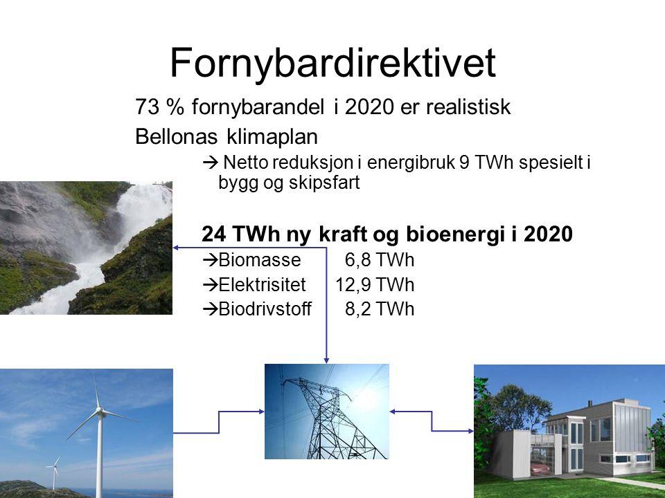 Fornybardirektivet 73 % fornybarandel i 2020 er realistisk Bellonas klimaplan  Netto reduksjon i energibruk 9 TWh spesielt i bygg og skipsfart 24 TWh ny kraft og bioenergi i 2020  Biomasse 6,8 TWh  Elektrisitet 12,9 TWh  Biodrivstoff 8,2 TWh