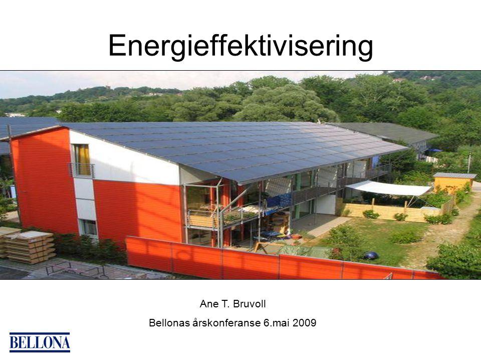 Energieffektivisering Ane T. Bruvoll Bellonas årskonferanse 6.mai 2009