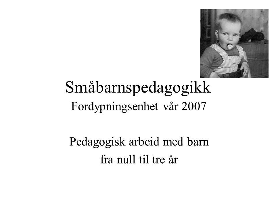 Småbarnspedagogikk Fordypningsenhet vår 2007 Pedagogisk arbeid med barn fra null til tre år