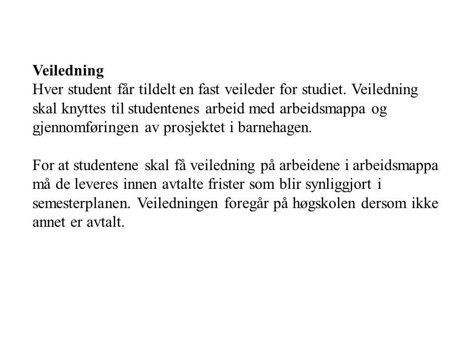 Veiledning Hver student får tildelt en fast veileder for studiet.
