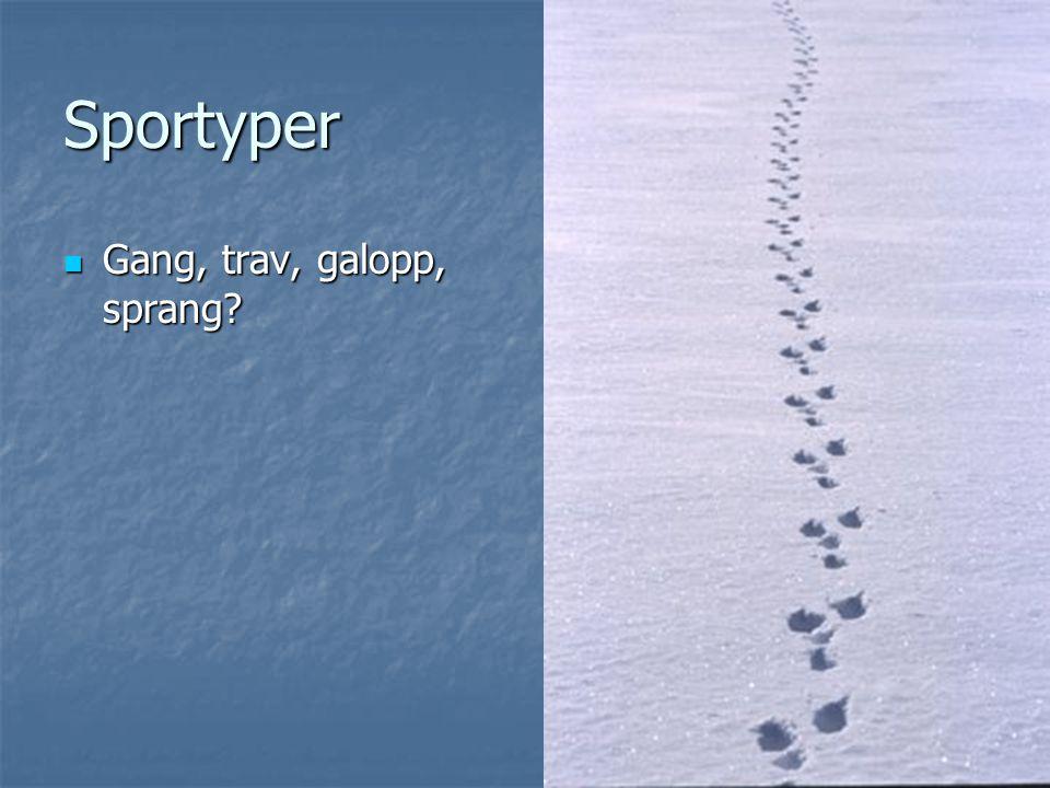 Sportyper Gang, trav, galopp, sprang? Gang, trav, galopp, sprang?