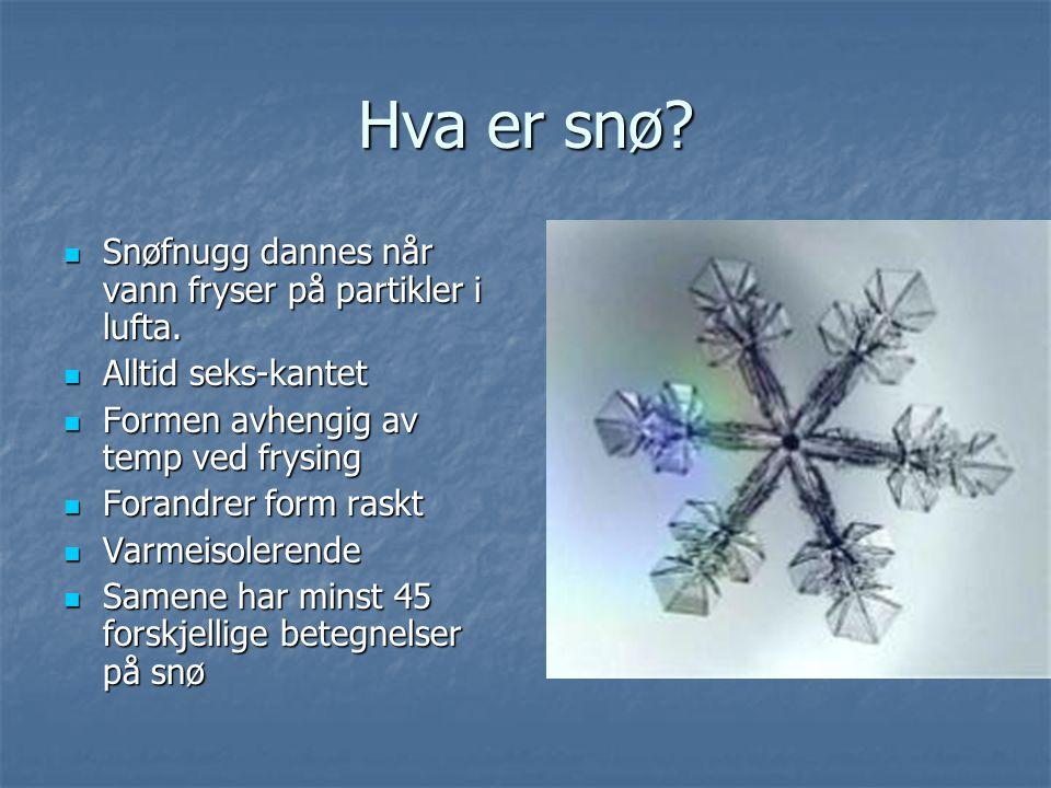 Hva er snø.Snøfnugg dannes når vann fryser på partikler i lufta.