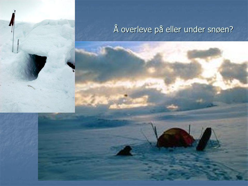 Å overleve på eller under snøen?