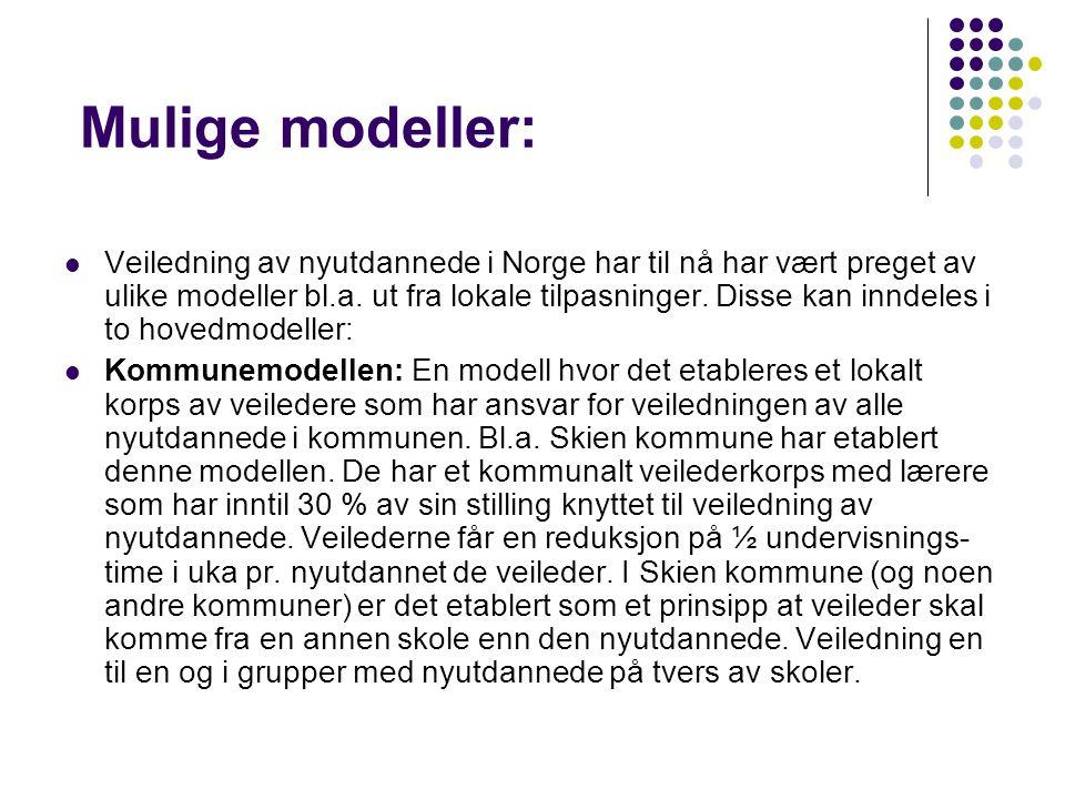 Mulige modeller: Veiledning av nyutdannede i Norge har til nå har vært preget av ulike modeller bl.a. ut fra lokale tilpasninger. Disse kan inndeles i