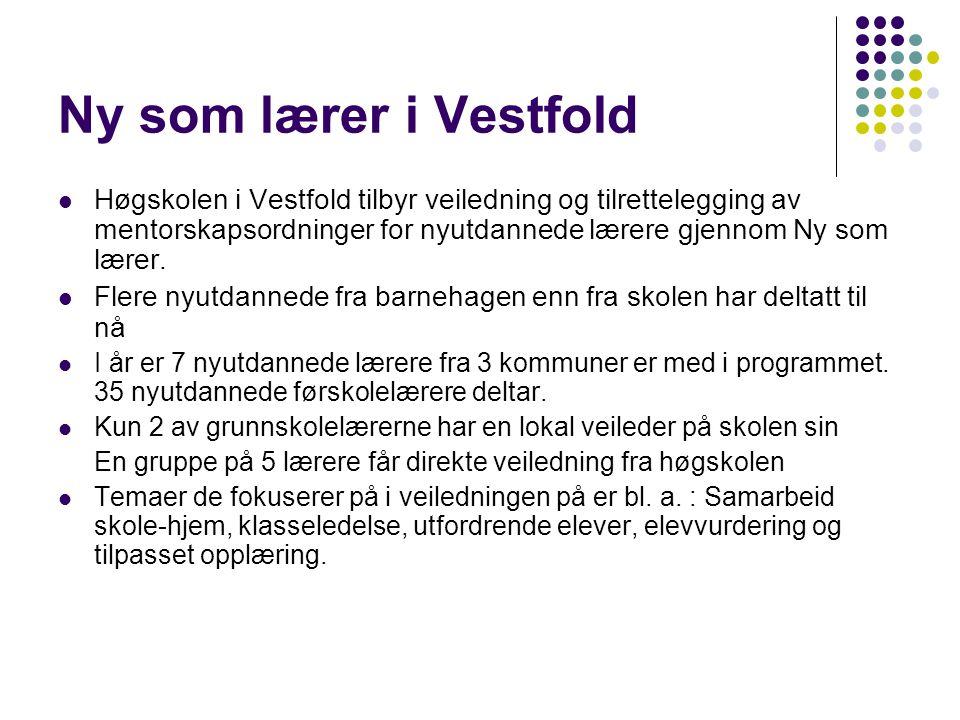 Ny som lærer i Vestfold Høgskolen i Vestfold tilbyr veiledning og tilrettelegging av mentorskapsordninger for nyutdannede lærere gjennom Ny som lærer.