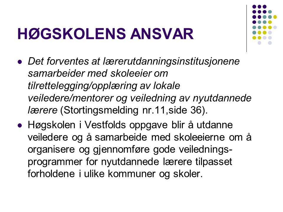 Mulige modeller: Veiledning av nyutdannede i Norge har til nå har vært preget av ulike modeller bl.a.