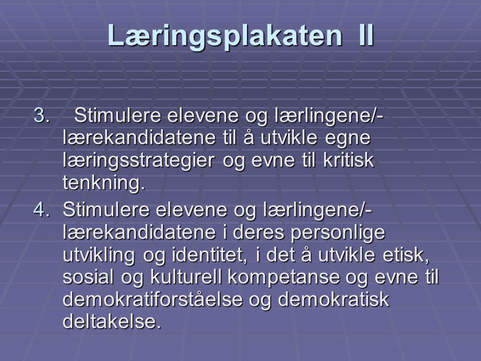 Læringsplakaten II 3.