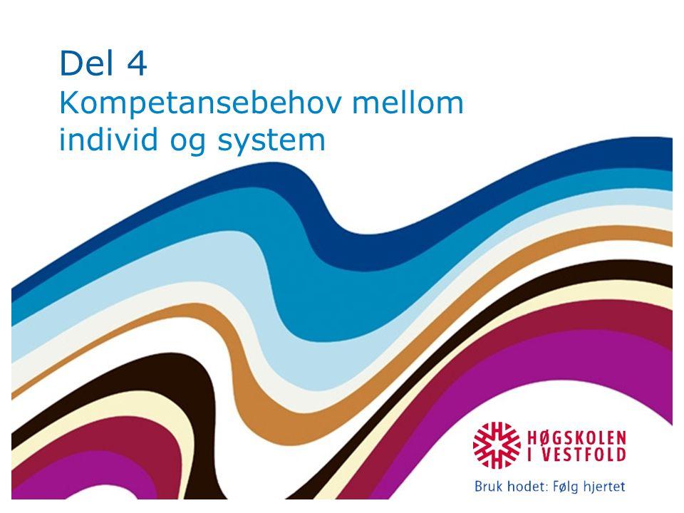 Del 4 Kompetansebehov mellom individ og system