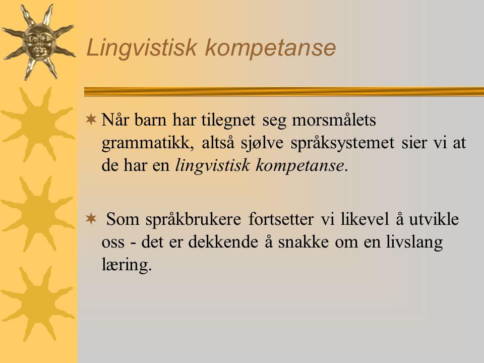 Lingvistisk kompetanse  Når barn har tilegnet seg morsmålets grammatikk, altså sjølve språksystemet sier vi at de har en lingvistisk kompetanse.  So