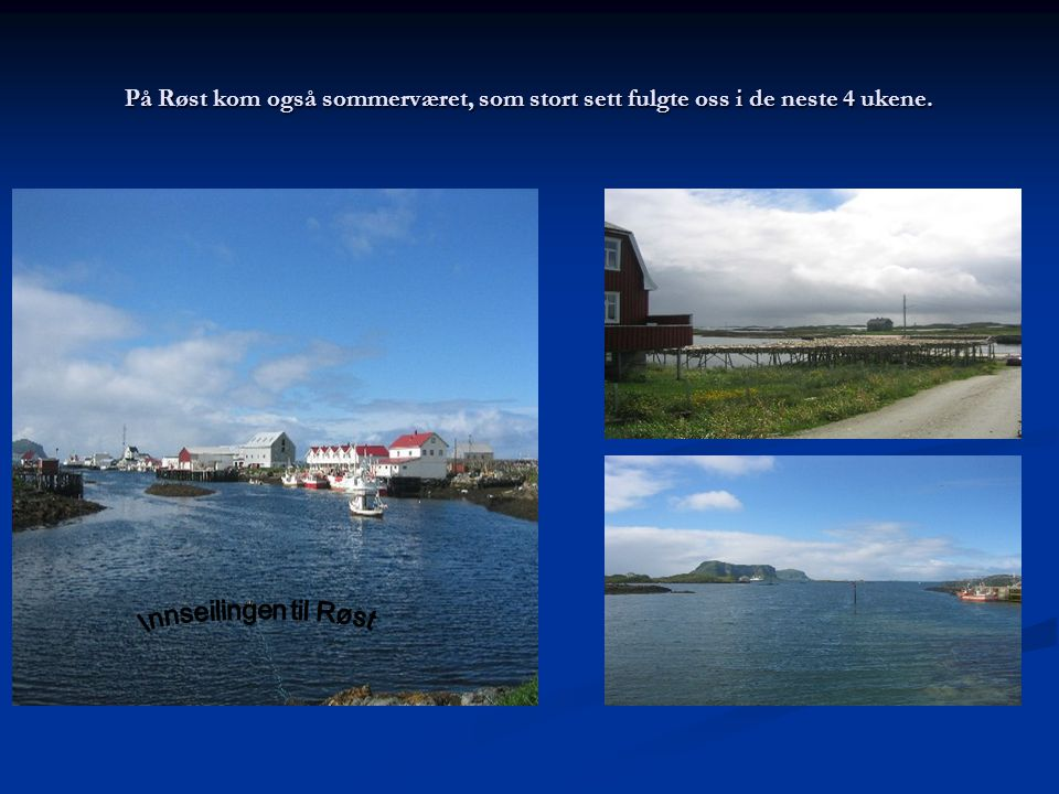På Røst kom også sommerværet, som stort sett fulgte oss i de neste 4 ukene.