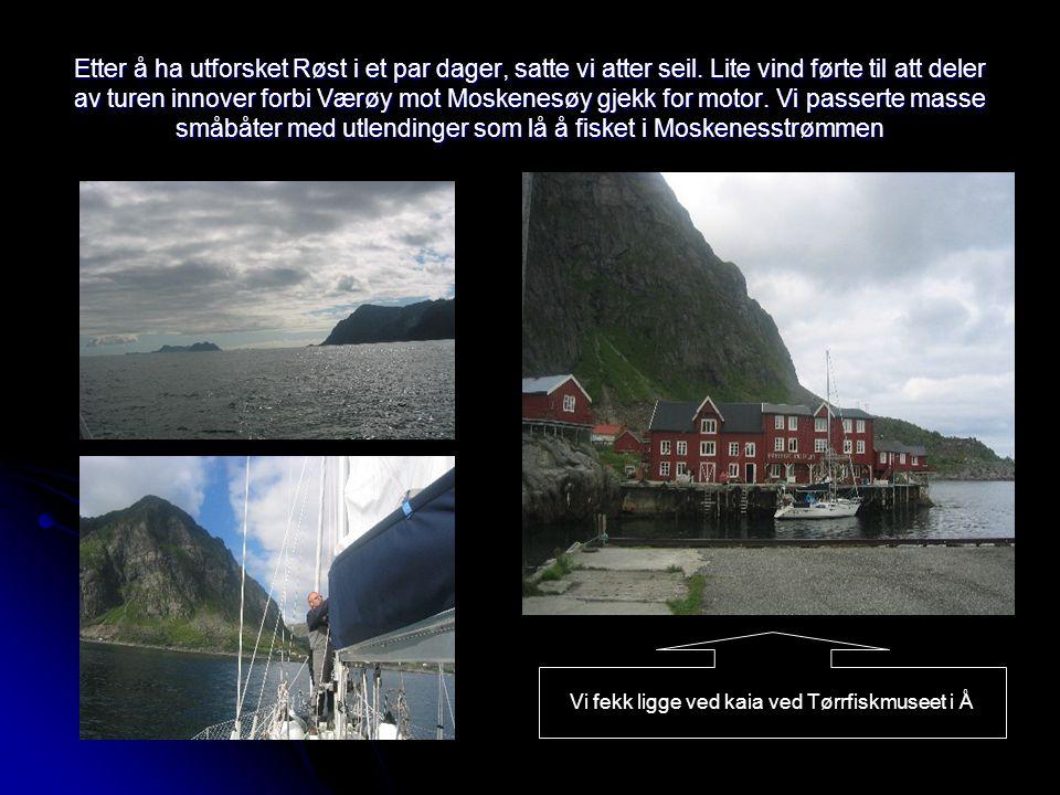 Etter å ha utforsket Røst i et par dager, satte vi atter seil. Lite vind førte til att deler av turen innover forbi Værøy mot Moskenesøy gjekk for mot