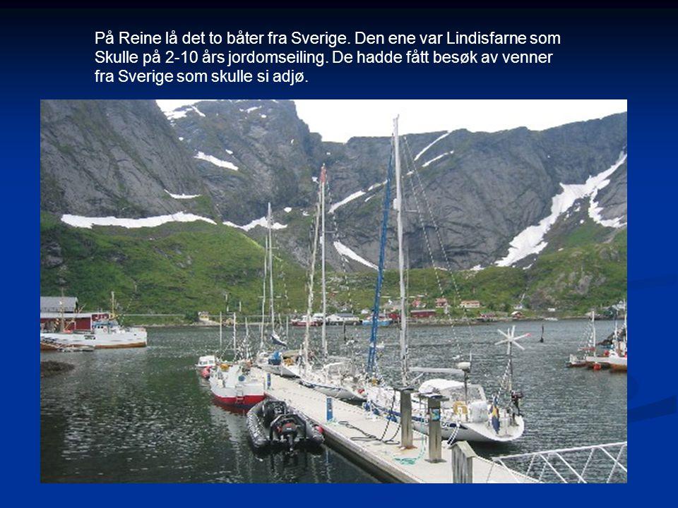 På Reine lå det to båter fra Sverige. Den ene var Lindisfarne som Skulle på 2-10 års jordomseiling. De hadde fått besøk av venner fra Sverige som skul