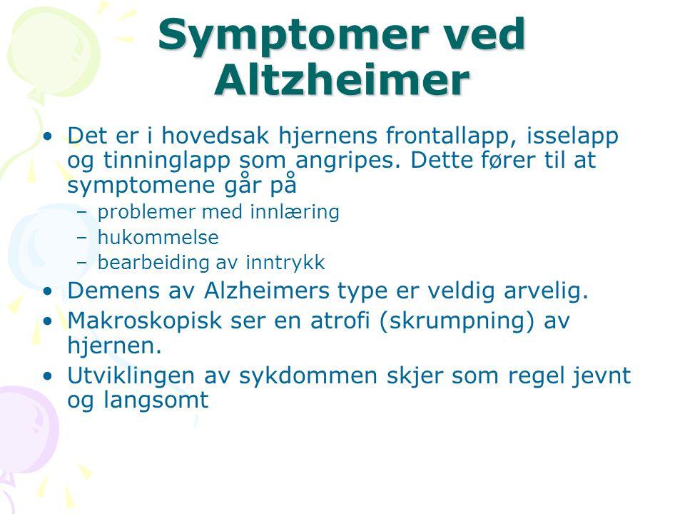Symptomer ved Altzheimer Det er i hovedsak hjernens frontallapp, isselapp og tinninglapp som angripes. Dette fører til at symptomene går på –problemer