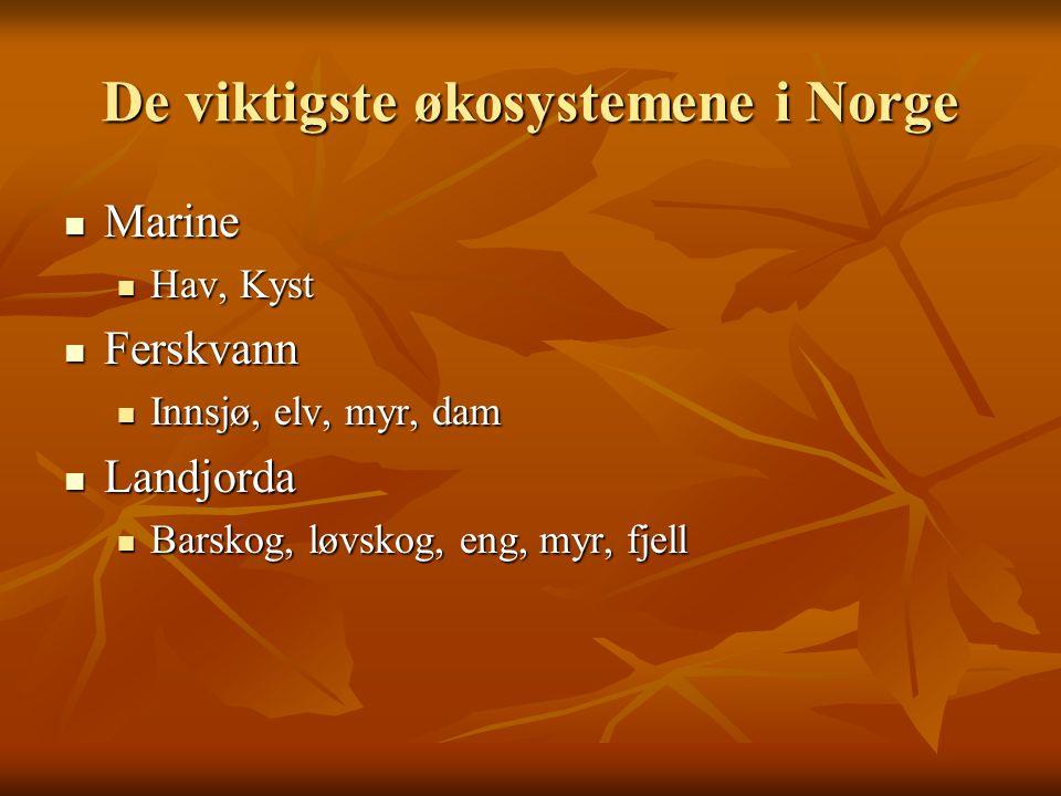 De viktigste økosystemene i Norge Marine Marine Hav, Kyst Hav, Kyst Ferskvann Ferskvann Innsjø, elv, myr, dam Innsjø, elv, myr, dam Landjorda Landjord