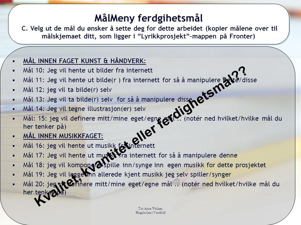 Tor Arne Wølner, Høgskolen i Vestfold MålMeny ferdgihetsmål C. Velg ut de mål du ønsker å sette deg for dette arbeidet (kopier målene over til målskje